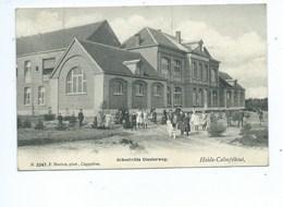 Kalmthout Heide Calmpthout Schoolvilla Diesterweg ( Hoelen 3247 ) - Kalmthout