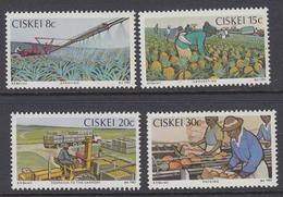 D10602 Ciskei South Africa 1982 Pineapple Farming Irrigation Tractors MNH Set - Afrique Du Sud Afrika RSA - Ciskei