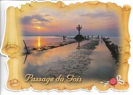 85 - VENDÉE - NOIRMOUTIER - PARCHEMIN DU PASSAGE DE GOIS LA NUIT - CPM - VIERGE - - Ile De Noirmoutier