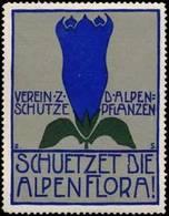 Schützet Die Alpenflora Reklamemarke - Cinderellas