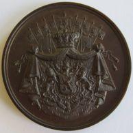 M02070  CINQUANTENAIRE PARLEMENTAIRE - CHARLES ROGIER - CREATEUR DE CHEMINS DE FER - 1882 (54g) Blason Au Revers - Professionnels / De Société