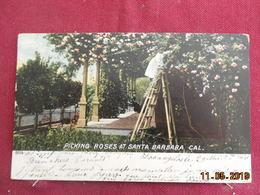 CPA - Santa Barbara - Picking Roses - Santa Barbara