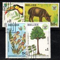 CI1166a - BELIZE 1981 , Serie Yvert N. 562/565 Usata (2380A) - Belize (1973-...)