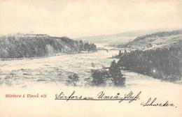 Västerbotten Sweden Photo Postcard - Suède