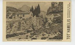 """PUBLICITÉ - TABLEAUX - SALON 1931 """"Amandiers Fleuris """" - Par EDOUARD PERRET - PUB Des LABORATOIRES CHANTEREAU - Publicité"""