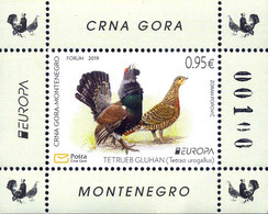 MONTENEGRO 2019,EUROPA CEPT,NATIONAL BIRDS,VOGEL,ANIMALS,BLOCK,,,MNH - Montenegro