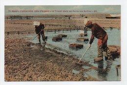 - CPA BASSIN D'ARCACHON (33) - Le Travail Dans Les Parcs Aux Huîtres 1931 - Edition BR N° 71 - - Arcachon