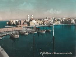 Cartolina  - Postcard / Viaggiata -  Sent - Molfetta, Panorama.. ( Gran Formato ) Anni 60° - Bari