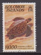 Solomon Is.- Tartaruga Turtle $10  MNH - Oceania (Other)