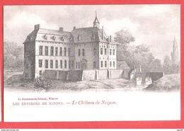 CP NINOVE Le Château De NEIGEM éditeur Anneessens  Très Bel état - Ninove