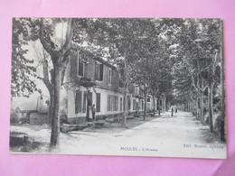 Moulès Commune D' ARLES  - L' Avenue -  Plan Et Perspective Peu Commune - Edit. Mouret Epicerie - Voyagé En 1919 - Other Municipalities