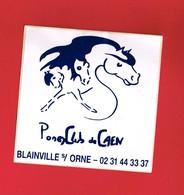 1 Autocollant PONEY CLUB De Caen à BLAINVILLE SUR ORNE - Autocollants
