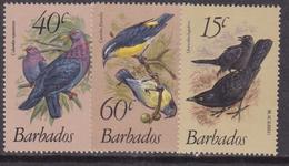 Barbados -  Uccelli Birds Set MNH - Barbados (1966-...)