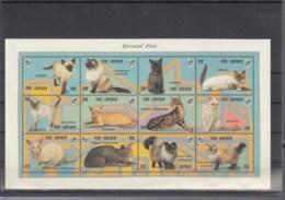 Gambia Michel Cat.No. Mnh/** Sheet 1653/1664 + Sheet 196/197 Cats - Gambia (1965-...)
