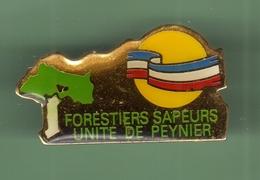 FORRESTIERS SAPEURS UNITE DE PEYNIER *** 1005 - Firemen