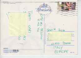 MESSICO  2004 - Cartolina Per Italia - Flora - Fiori - Messico