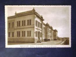 PUGLIA -BARI -BISCEGLIE -F.P. LOTTO N°344 - Bari
