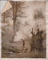 LONDON PARK  CHESWICK HOUSE THE KING Dendrology, Forest, Xylology, Forestry 20*15CM Fonds Victor FORBIN 1864-1947 - Lugares