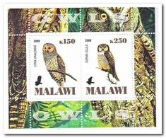 Malawi 2009, Postfris MNH, Birds, Owls - Malawi (1964-...)
