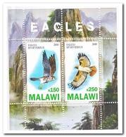 Malawi 2010, Postfris MNH, Birds Of Prey - Malawi (1964-...)