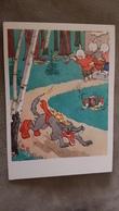WOLF AND 3 LITTLE PIGS  - OLD PC 1959  - Mushroom - Champignon - Non Classificati
