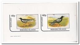 Bernera Islands  1982, Postfris MNH, Birds - Regionale Postdiensten