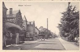 Edegem, Hovestraat (pk60436) - Edegem