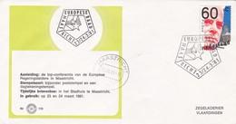 EUROPESE RAAD MAASTRICHT OBLITEREE 1981 MAASTRICHT NEDERLAND - BLEUP - Periodo 1980 - ... (Beatrix)