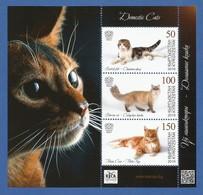Kirgisistan 2019 , Cats / Katzen - Block - Postfrisch / MNH / (**) - Kirgisistan