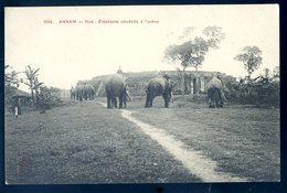 Cpa Du Viêt Nam Annam Hué Eléphants Conduits à L' Arène   AFS6bis - Vietnam