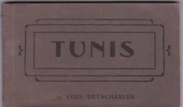 TUNIS, 24 VUES DETACHABLES. AM. PHOTOSET GRUSS AUS LEMBRANÇA SOUVENIR 1900s - BLEUP - Tunisia