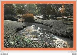 A207/491 64 - PAU - Au Parc Beaumont Matin Sur Le Lac ( Ed Jove ) - Sin Clasificación