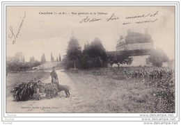 47) CAMBES (LOT ET GARONNE)   VUE GENERALE DU CHATEAU  - (ANIMÉE - PAYSANNE) - France