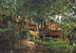 1 AK Philippinen * A Village Of The Mangyan Tribe In Mindoro Island - Mangyan Sind Die Ureinwohner Der Insel Mindoro * - Philippines