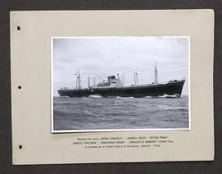 Marina Navi Fotografia Motonave Da Carico Andrea Gritti Società Sidarma 1940 Ca. - Foto