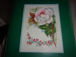 N/ LILLE Chicorée Belle Jardinière Bériot  GRAND  Chromo   ROSE BLANCHE  MEDAILLE OR EXPOSITION 1883 - Kaufmanns- Und Zigarettenbilder