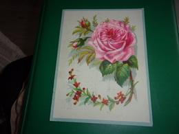 N/ LILLE Chicorée Belle Jardinière Bériot  GRAND  Chromo   ROSE  ROSE  MEDAILLE OR EXPOSITION 1883 - Kaufmanns- Und Zigarettenbilder