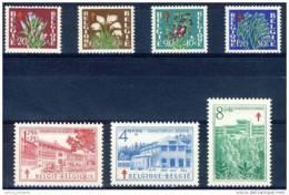 D - [DEL-043-2]TB//-c:54e-N° 834/40, Antituberculeux, Fleurs Diverses, Sanatorium, La Série Neuf ** TB. Cote 54 Eur - Belgium