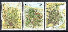 Ireland 1986 Ferns Set Of 3, MNH, SG 632/4 - 1949-... République D'Irlande