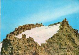 Val D' Aosta - Vetta Del Gran Paradiso - Fg - Italia