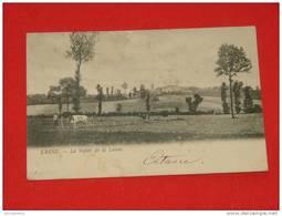 Lasne  -  La Vallée De La Lasne  -    1907   - - Lasne