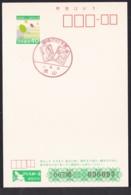 Japan Commemorative Postmark, 1988 Sharaku 10y (jci3185) - Japan