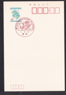 Japan Commemorative Postmark, 1989 Panda (jci3207) - Japan