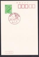 Japan Commemorative Postmark, 1989 Flower (jci3208) - Japan