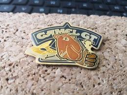 1 Pins Camel  GT Sport De Voiture Cigarette Dromadaire - Städte