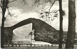 W2993 Romania - Baia Mare - Monumentul Ostasului Roman / Viaggiata 1972 - Romania