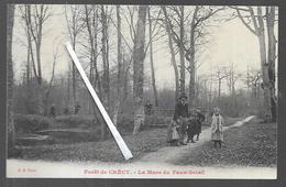 Cpa 8020116 Foret De  Crécy La Mare Du Faux Soleil - Crecy En Ponthieu