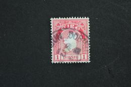 IRLANDE 1 PINSIN ,PAIRE , OBLITERE,( Pte Trace De Charniére) - 1922-37 Stato Libero D'Irlanda