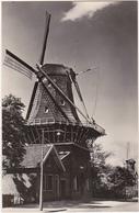 Moulin à Vent / 1954 / Hollands Molenlandschap - Moulins à Vent
