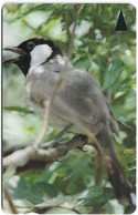Bahrain - Bird White Cheekes Bulbul - 46BAHD - 1998, 120.000ex, Used - Bahrain